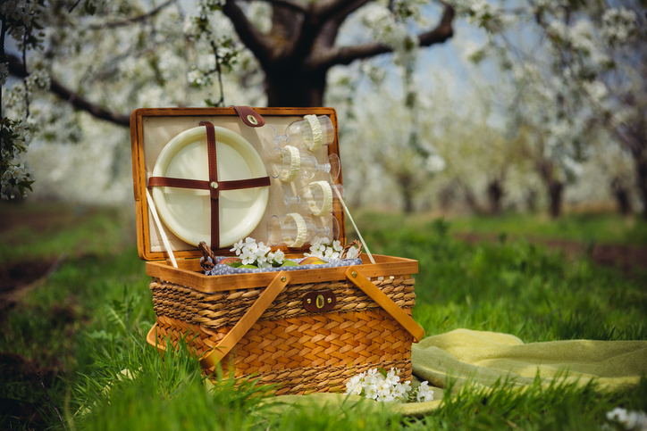 cos de picnic pe iarba