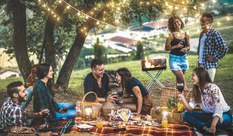prieteni la picnic
