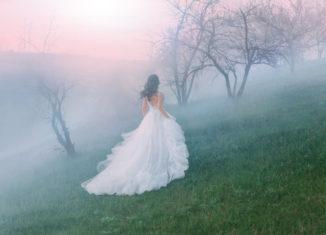 vise nunta