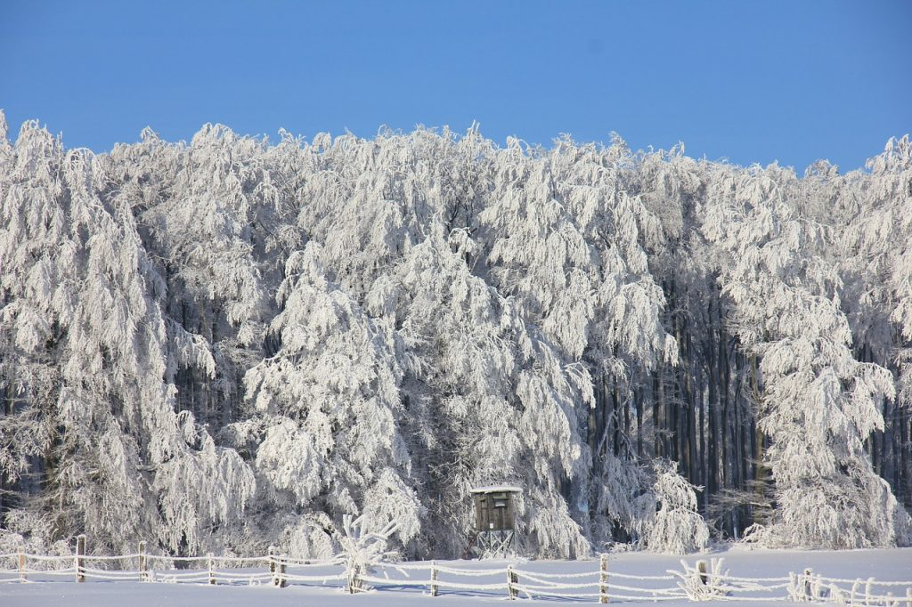 winter-196339_1280