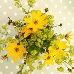 Leacuri magice cu plante pentru dragoste si sanatate