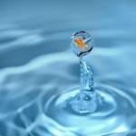 Dieta contra retentiei de apa