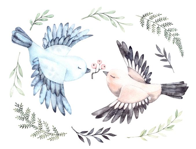 desen porumbei