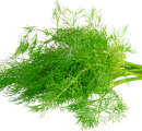 http://localhost/femeia/wp-content/uploads/2012/03/21/1-1570.png