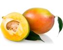 http://localhost/femeia/wp-content/uploads/2012/03/21/mango.png