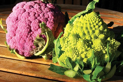 9 legume necunoscute