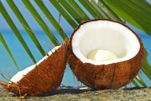 Nuca de cocos, aliat in dieta de toamna
