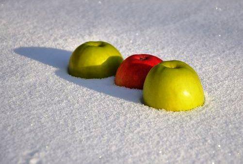 Dieta de iarna