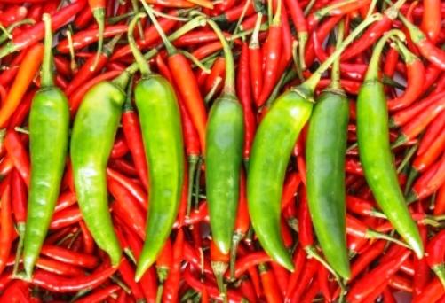 Dieta indiana, dieta armoniei