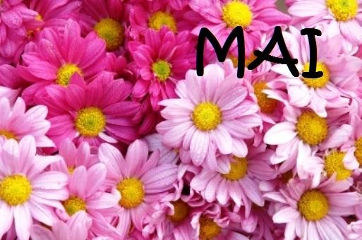 http://localhost/femeia/wp-content/uploads/2014/04/30/id-10040125.jpg