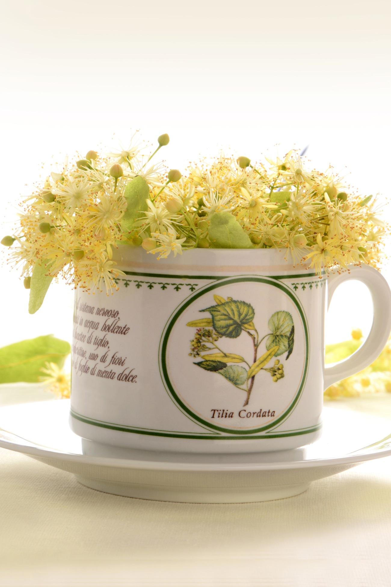 consumul de ceai verde