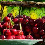 Visinele, fructele sanatatii