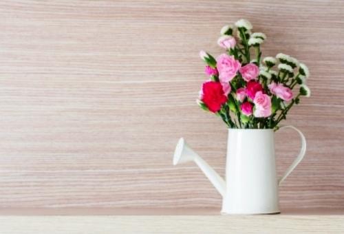 Cele mai potrivite flori pentru a fi facute cadou