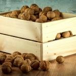 Nucile, fructele creierului