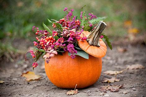 http://localhost/femeia/wp-content/uploads/2015/03/13/plante-decoratiuni-dovleac.jpg
