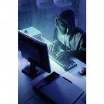 Tenebrele retelelor de socializare: psihopati, violatori, criminali