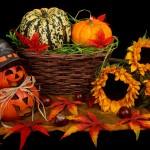 Bucuriile lui noiembrie - fructe și legume de sezon