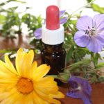 Medicamente din natura