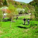 Pedalând pe cărările României
