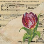 Plantelor le place muzica