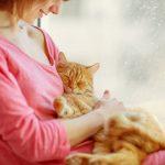 Tot ce trebuie să știi înainte de a-ți lua o pisică