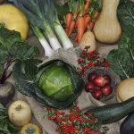 10 alimente pentru afecțiuni respiratorii