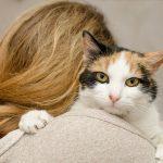 Greșeli de alimentație din iubire față de animalul tău