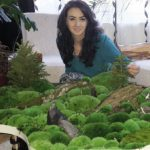 Diana Costes face colțuri de verde