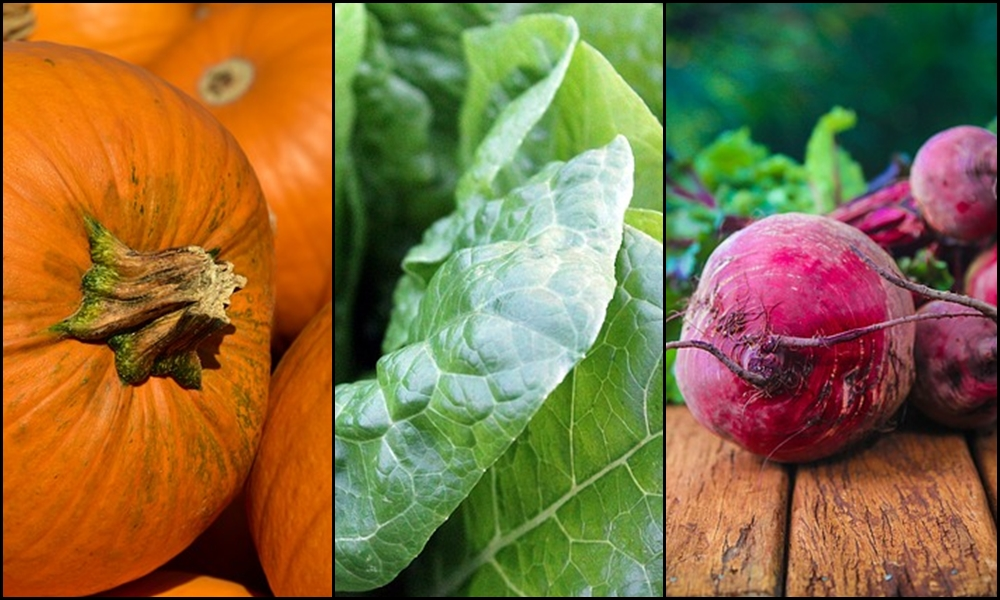 retete legume de toamna