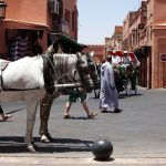 Vacanță plină de culoare în Marrakech