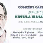 Vizual concert caritabil
