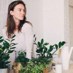 3 motive pentru care să alegi un decor cu plante artificiale