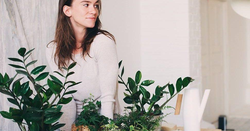 decor plante articifiale