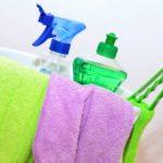 Fără microbi periculoşi în casă