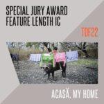 """Încă un premiu pentru filmul documentar """"Acasă"""", filmat în Delta Văcărești"""