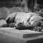 Monumentele, cerințe speciale pentru firmele de servicii funerare din București